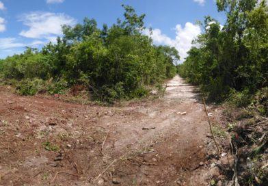 En Venta, Terreno en Álamos 2 Cancun Quintana Roo